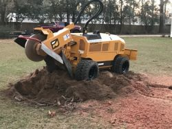 treesy cuts stump grinding